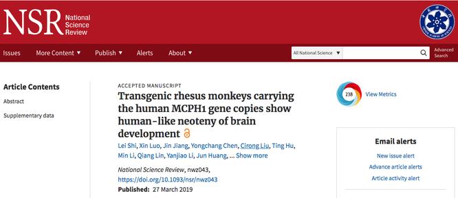 Đưa gene người vào não khỉ - các nhà khoa học Trung Quốc lại gây sóng gió ảnh 1