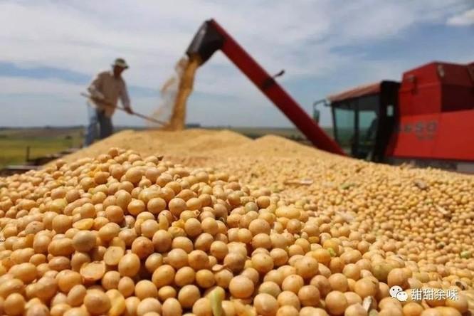 Quan hệ thương mại Trung – Mỹ: bất đồng gia tăng, tương lai mờ mịt! ảnh 6