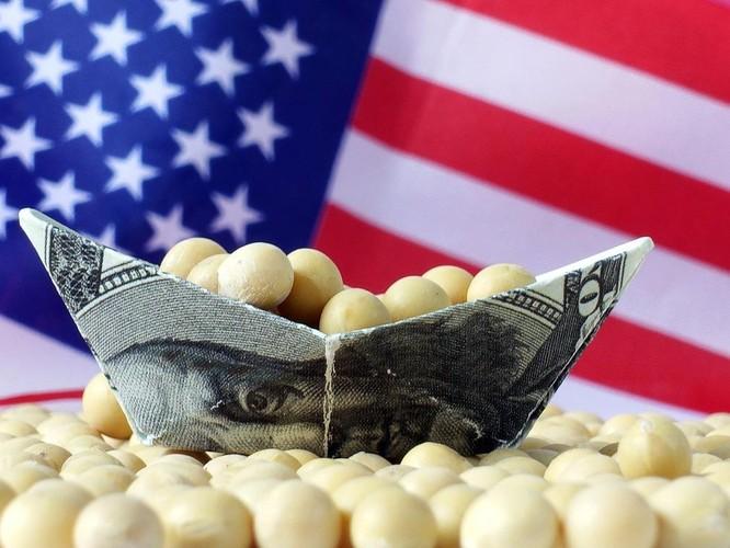 Quyết đấu Trung Quốc đến cùng, ông Trump hỗ trợ thêm 16 tỷ USD cho nông dân Mỹ ảnh 2