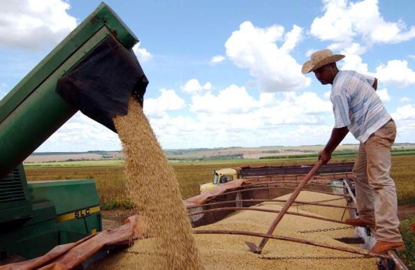 Quyết đấu Trung Quốc đến cùng, ông Trump hỗ trợ thêm 16 tỷ USD cho nông dân Mỹ ảnh 1
