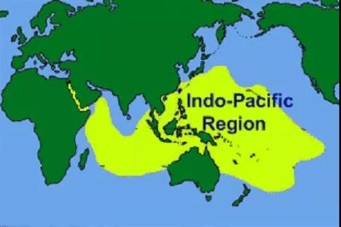 Học giả Malaysia: Sóng ngầm mạnh mẽ, các nước ASEAN không cam chịu về Biển Đông ảnh 2