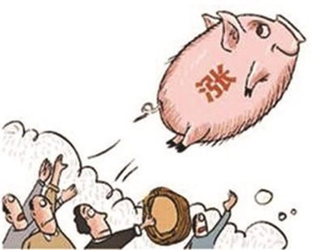 """Dân Trung Quốc than trời vì giá thịt lợn """"trên trời"""" ảnh 3"""