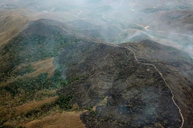 """Trung Quốc kêu oan khi bị truyền thông phương Tây tố """"góp lửa"""" vào thảm họa cháy rừng Amazon ảnh 3"""