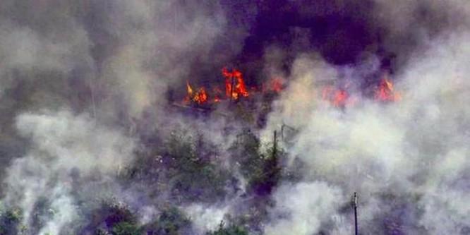 """Trung Quốc kêu oan khi bị truyền thông phương Tây tố """"góp lửa"""" vào thảm họa cháy rừng Amazon ảnh 1"""