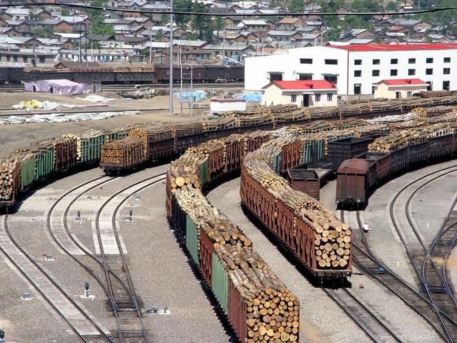 Thương chiến Mỹ - Trung gia tăng, Nga thừa cơ chiếm lĩnh thị trường Trung Quốc ảnh 2