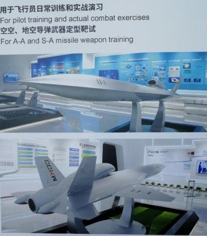 Giải mã LJ-1 - máy bay không người lái tàng hình đầu tiên của Trung Quốc ảnh 2