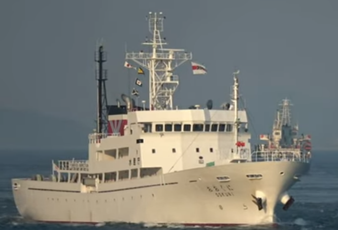 Va chạm tàu tuần tra Nhật, tàu cá Triều Tiên bị chìm trong vùng đặc quyền kinh tế của Nhật ảnh 1