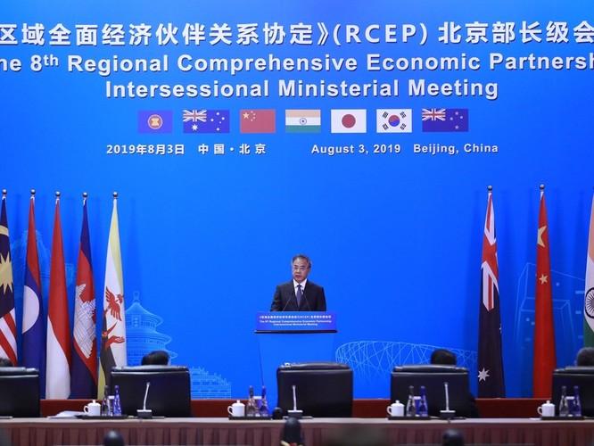 Vì sao Nhật Bản đột ngột tuyên bố không tham gia ký Hiệp định đối tác kinh tế toàn diện khu vực (RCEP)? ảnh 3