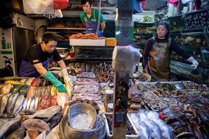 Lo sợ dịch SARS quay trở lại và lây lan, Trung Quốc, Hong Kong, Ma Cao, Singapore... chủ động đối phó quyết liệt ảnh 1