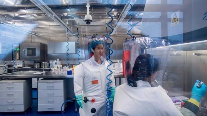 Liên minh tình báo 5 nước chính thức điều tra hai nhà khoa học tại Viện Nghiên cứu Virus Vũ Hán ảnh 3