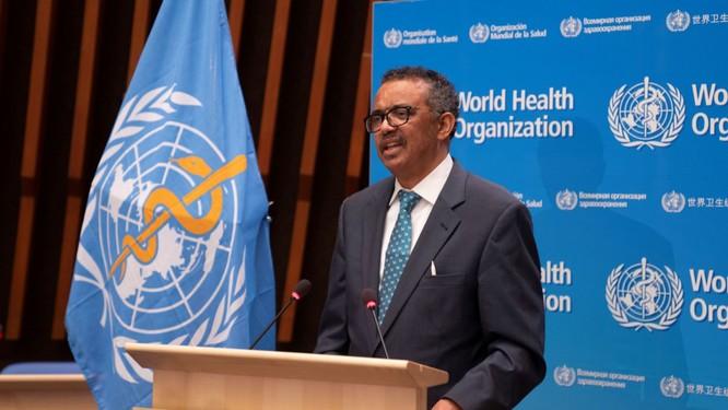 Đại hội Y tế Thế giới: 116 quốc gia ủng hộ điều tra Trung Quốc ảnh 1