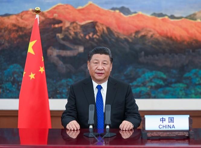 Đại hội Y tế Thế giới: 116 quốc gia ủng hộ điều tra Trung Quốc ảnh 3