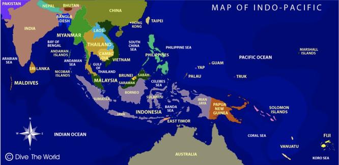 Đức công bố chiến lược Ấn Độ - Thái Bình Dương, thay đổi chính sách với Trung Quốc ảnh 1