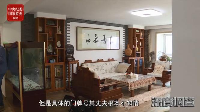 Nữ quan tham Trung Quốc với thú vui quái đản: mua nhà chỉ để cất của cải vơ vét được ảnh 3