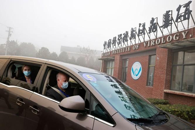 Nhóm chuyên gia WHO họp báo trước khi rời Trung Quốc: không phát hiện được gì mới! ảnh 1
