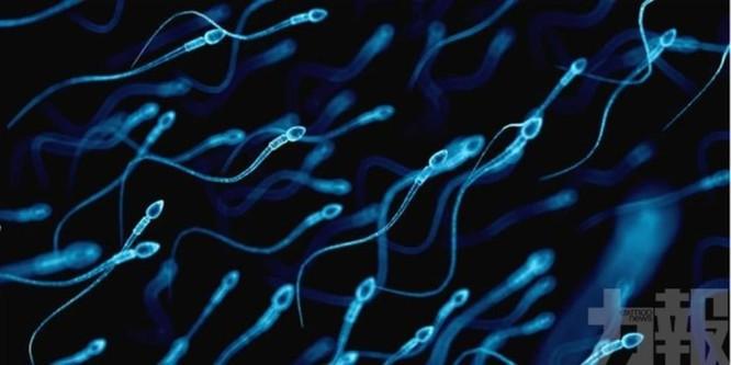 Nóng: Phát hiện mới cho thấy đàn ông sau khi nhiễm COVID-19, cơ hội có con rất thấp ảnh 2