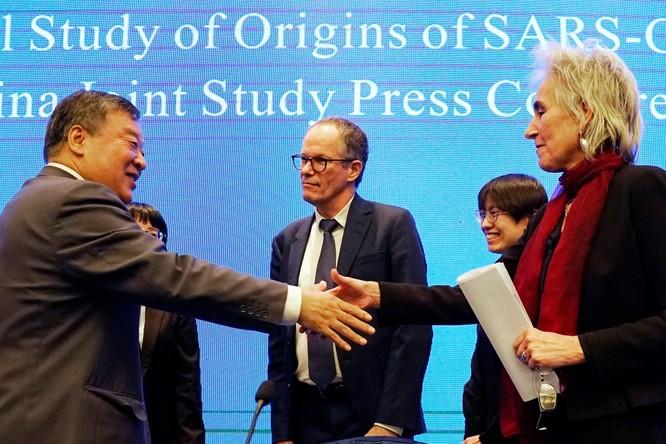 Các nhà nghiên cứu quốc tế yêu cầu điều tra lại nguồn gốc SARS-CoV-2, Trung Quốc bác bỏ ảnh 4