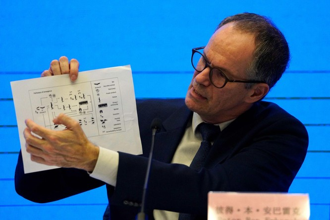 Một số thành viên Nhóm điều tra WHO bày tỏ không đồng tình với Trung Quốc về nguồn gốc SARS-CoV-2 ảnh 1