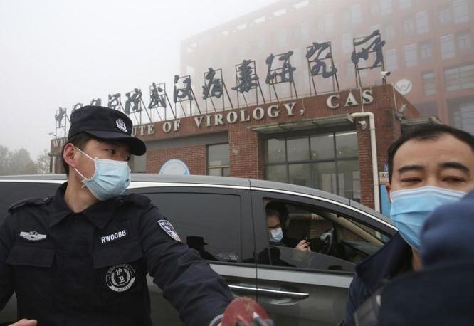 Trung Quốc đấu khẩu với các nhà khoa học quốc tế về việc điều tra nguồn gốc SARS-CoV-2 ảnh 4