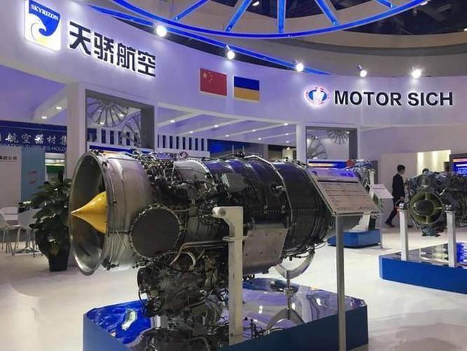 Ukraine tuyên bố quốc hữu hóa Motor Sich, Trung Quốc thiệt đơn thiệt kép ảnh 1