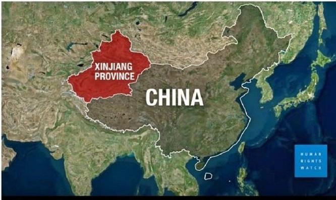 Liên minh châu Âu, Mỹ, Anh, Canada, Australia và New Zealand đồng loạt ra đòn trừng phạt Trung Quốc ảnh 3