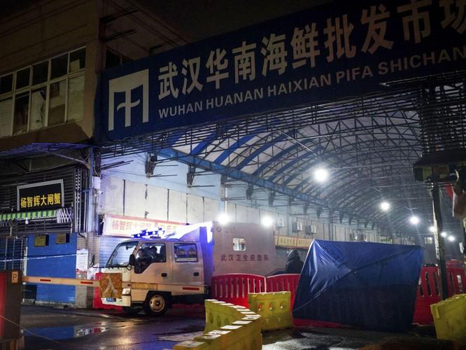 Tổng Giám đốc WHO bất ngờ kêu gọi Trung Quốc cởi mở, hợp tác truy xuất nguồn gốc SARS-CoV-2 ảnh 3