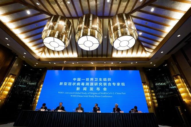 Nhóm G7 sẽ thành lập nhóm điều tra độc lập truy xuất nguồn gốc SARS-CoV-2? ảnh 4