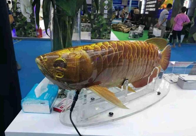 Trung Quốc bí mật phát triển tàu ngầm không người lái và cá robot dùng cho quân sự ảnh 2