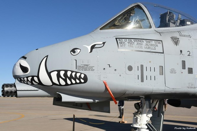 """Vì sao Quốc hội Mỹ quyết bảo vệ loại máy bay """"Lợn Lòi"""" đã hơn 40 tuổi? ảnh 2"""