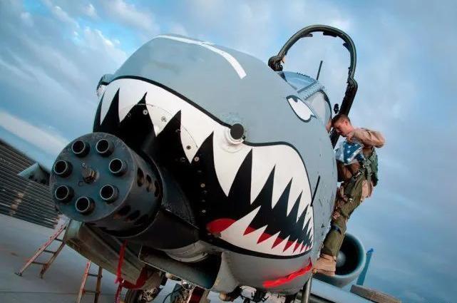 """Vì sao Quốc hội Mỹ quyết bảo vệ loại máy bay """"Lợn Lòi"""" đã hơn 40 tuổi? ảnh 3"""