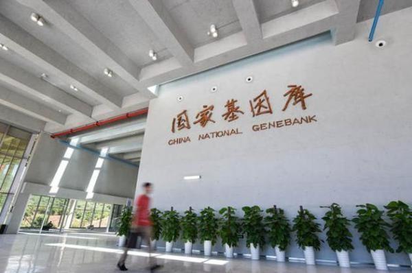 Trung Quốc lập ngân hàng gene 700 triệu nam giới gây rúng động thế giới ảnh 4
