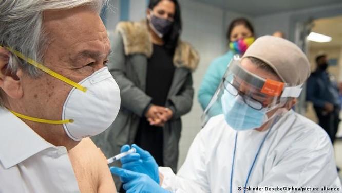 Thực hư về tin đồn tiêm vaccine COVID-19 gây vô sinh và...bất lực? ảnh 4