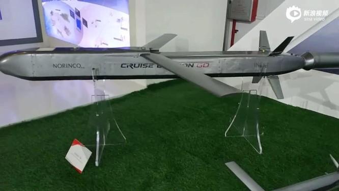 Trung Quốc khoe những phát triển đột phá về máy bay không người lái và tên lửa hành trình ảnh 8
