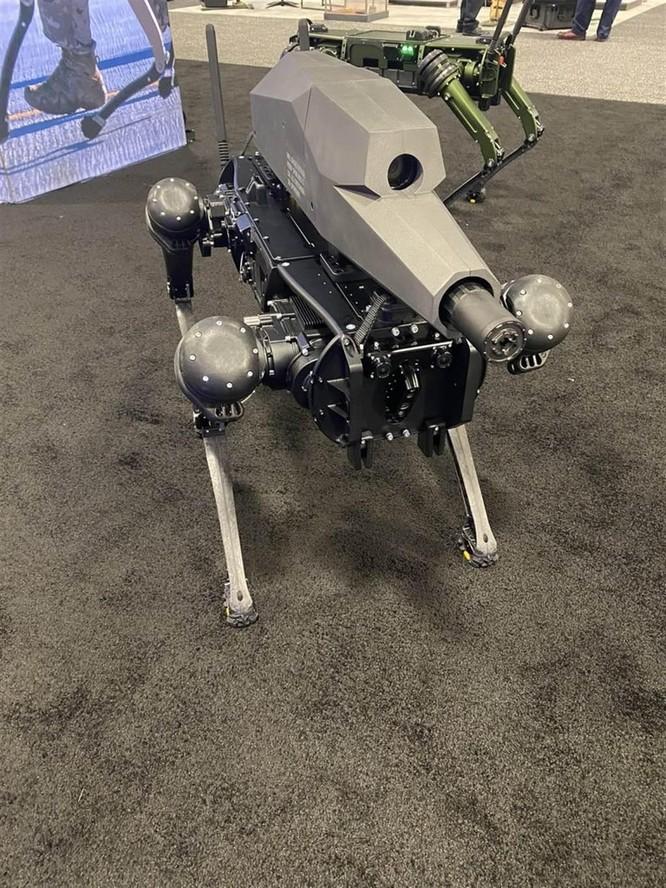 """Mỹ tung ra """"kẻ hủy diệt"""" đáng sợ: chó robot mang súng SPUR, chuẩn bị cho chiến tranh không người ảnh 1"""