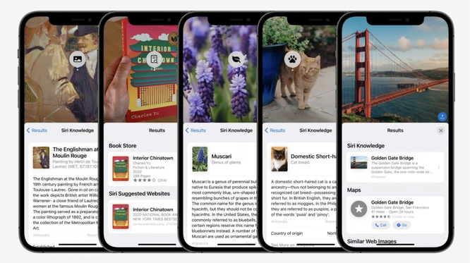 Cách hoạt động của Live Text trên những hệ điều hành mới của Apple ảnh 3