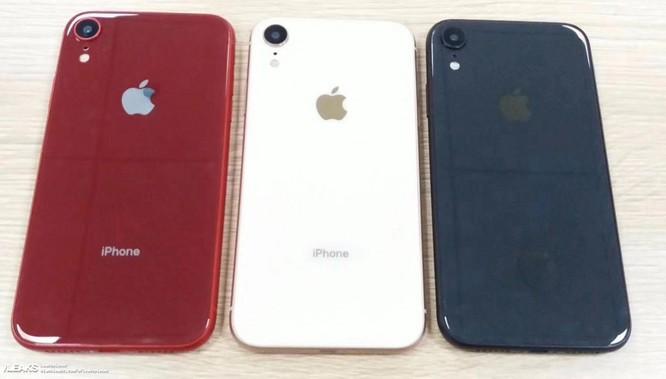 """Lộ hàng tấn ảnh của iPhone Xs và iPhone Xc vài giờ trước sự kiện """"Gather Around"""" ảnh 1"""