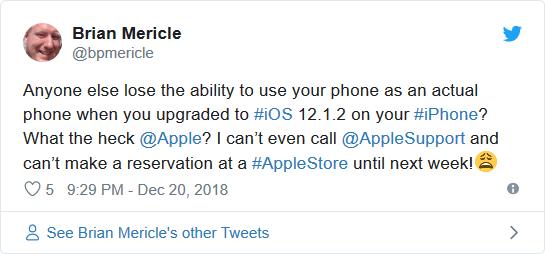 iOS 12.1.2 trên iPhone có lỗi kết nối nghiêm trọng ảnh 2