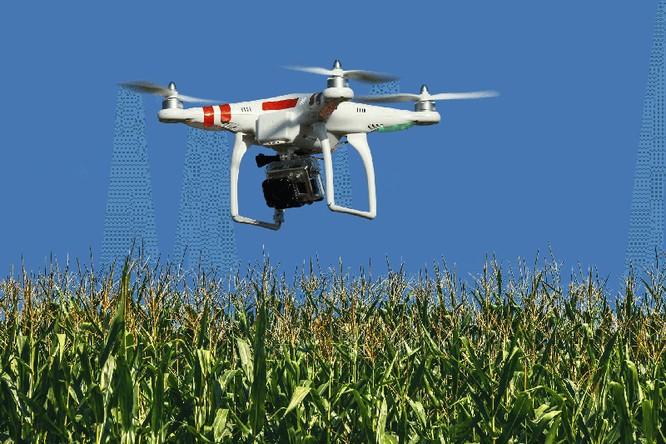 Máy bay không người lái - cộng sự mới của nông dân ảnh 1