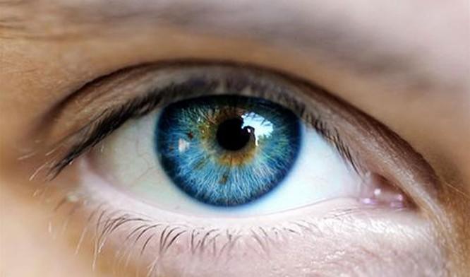 Tại sao nheo mắt lại giúp nhìn rõ hơn? ảnh 1