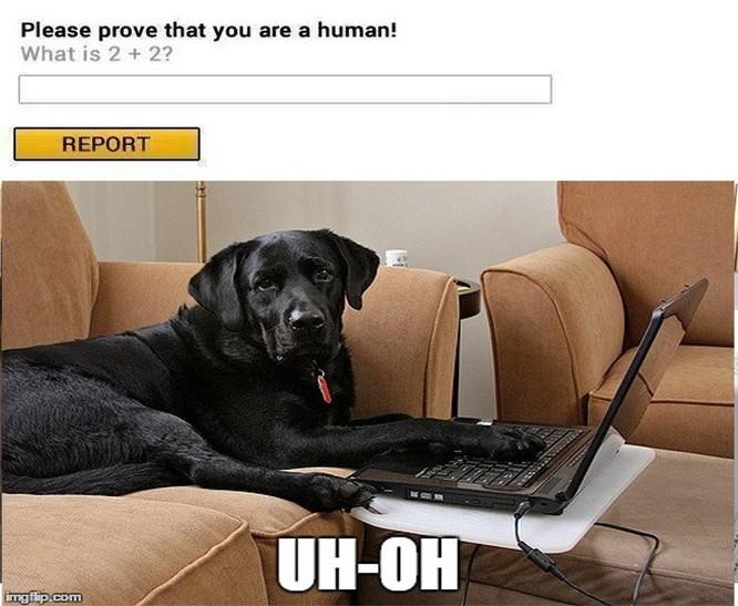CAPTCHA là gì? Nó hoạt động như thế nào? ảnh 5