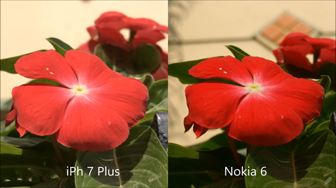 Đầu tiên về phần chụp ảnh, camera iPhone 7 Plus cho ảnh chân thực, trong khi ảnh chụp bởi Nokia 6 có xu hướng màu sắc tươi hơn.