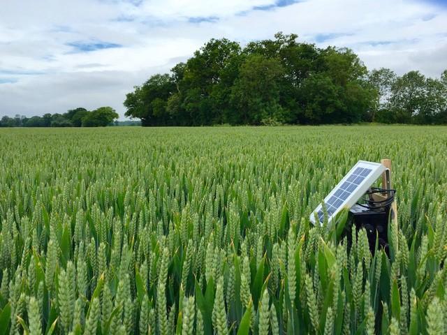 Theo TS Santhi: Công nghệ sẽ thay đổi cách thức làm nông nghiệp