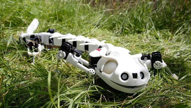7 robot lấy cảm hứng từ động vật 1