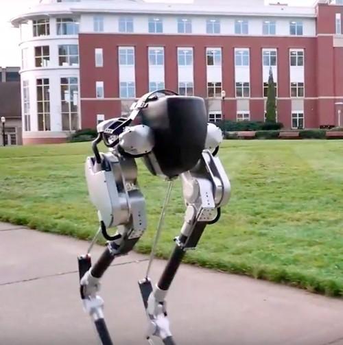 7 robot lấy cảm hứng từ động vật 3