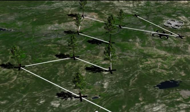 Công ty Anh nuôi tham vọng trồng 1 tỷ cây xanh nhờ drone ảnh 2