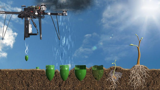 Công ty Anh nuôi tham vọng trồng 1 tỷ cây xanh nhờ drone ảnh 1