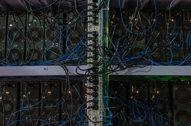 Hình 9: Những dây mạng và dây điện cắm chằn chịt của một dàn đào Bitcoin