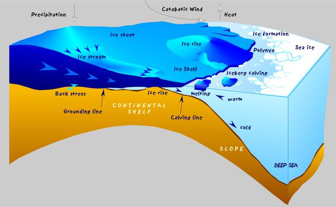 Polynya là những khu vực biển không bị đóng băng ở bên trong một khối băng.