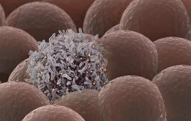 Các nhà khoa học phát triển tia laser có thể diệt tế bào ung thư trong máu ảnh 1