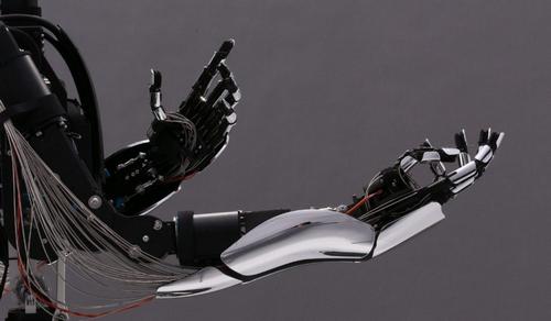 Cánh tay robot của hãng công nghệ Meltin. Ảnh: Meltin.